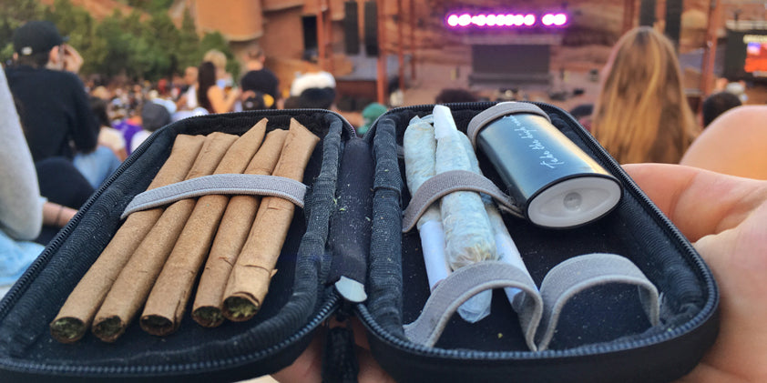 safety case with blunts