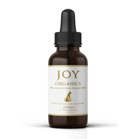 Joy Organics CBD Oil Tincture for Pets Product Review