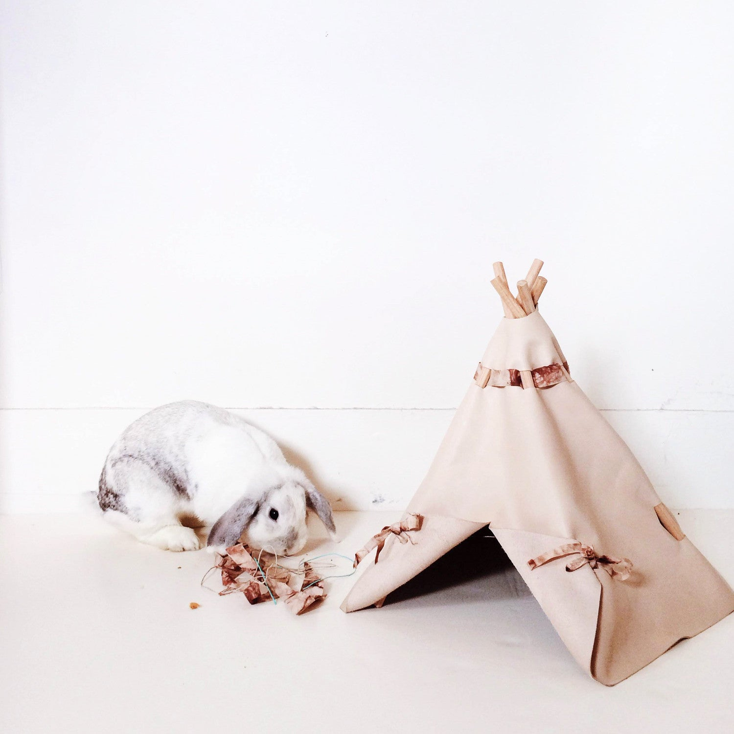 Custom Project: Pet Teepee