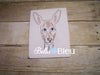 Kangaroo Animal machine colorwork embroidery design Wild Zoo Animal