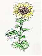 Sunflower Scribble Sketchy
