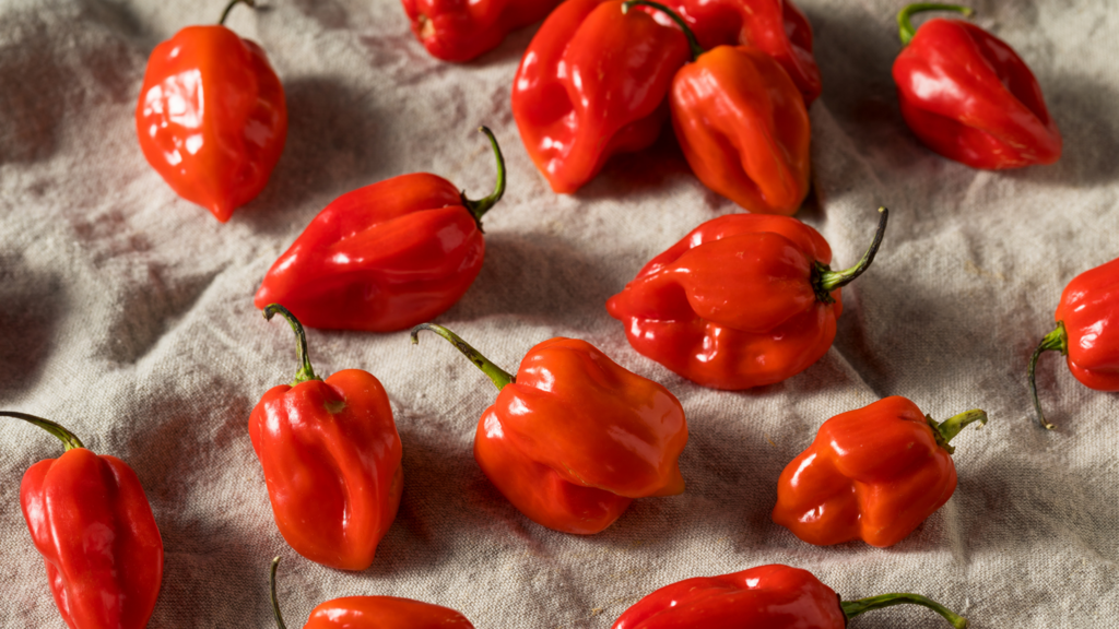 Remedies For Pepper Accidents