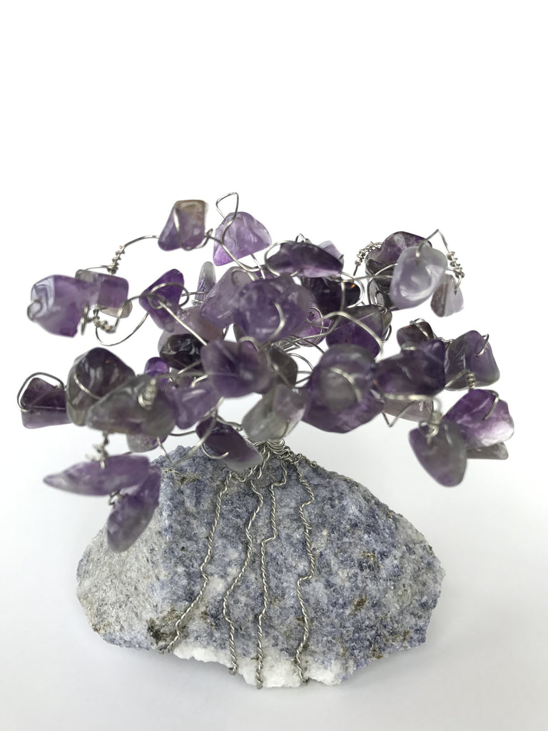 Amethyst & Wire Tree on Scapolite