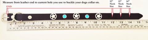 how to measure my dogs neck size