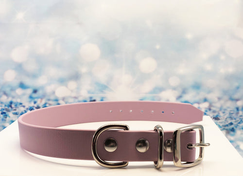 biothane dog collar in lavender with silver