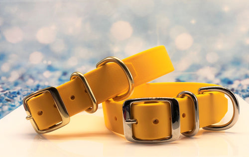 BioThane® Dog Collar in Yellow