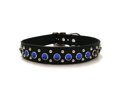 Blue Crown Canine Collar