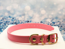 BioThane® Dog Collar in Pink