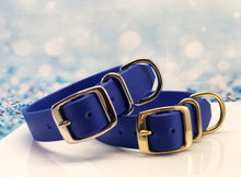 royal blue biothane waterproof dog collar