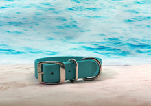 Turquoise biothane dog collar_waterproof