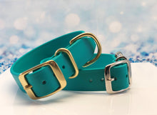 Turquoise_blue_green_dog collar_biothane