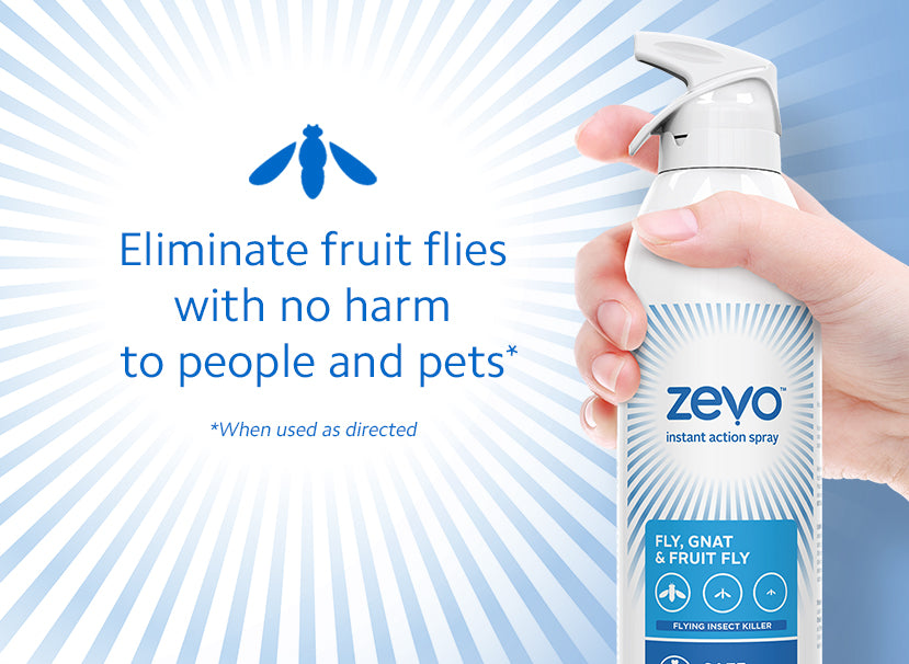 Get Rid of the Buzz with This Fruit Fly Spray | Zevo™ | Zevo