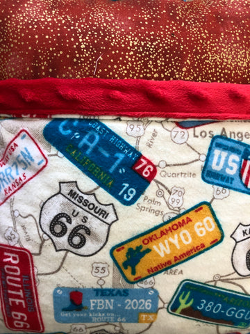 Reading Pocket Pillow Travel License Plates Route 66 Road Trip