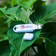 Load image into Gallery viewer, customized corporate color printed plastic body pen drive usb flash drive