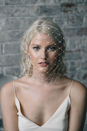 Full face birdcage veil with Swarovski crystals in ivory