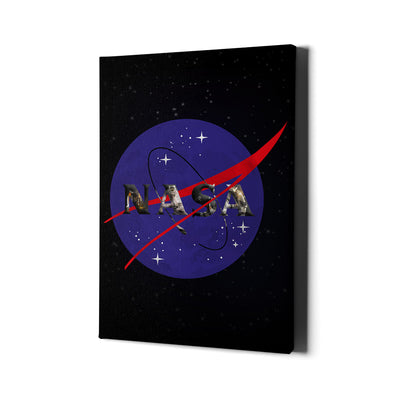 Artiful NASA Logo Canvas Art for the space collection