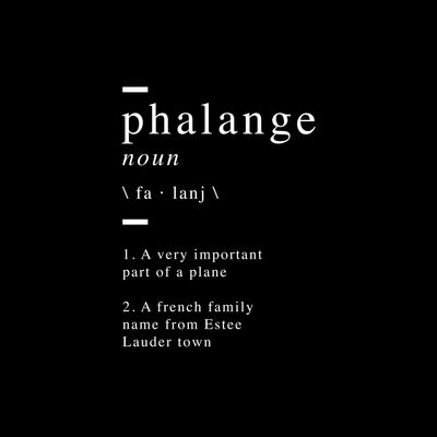 Phalange definition Canvas Wall Art - Artiful Definition Collection