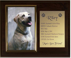 "Photo 4""x6"" Plaque 