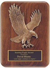 Eagle plaques by Awards2you.