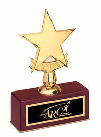 trophy star award offered by Awards2you