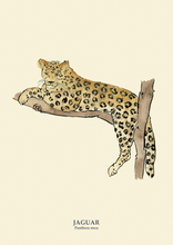 Load image into Gallery viewer, Jaguar Print