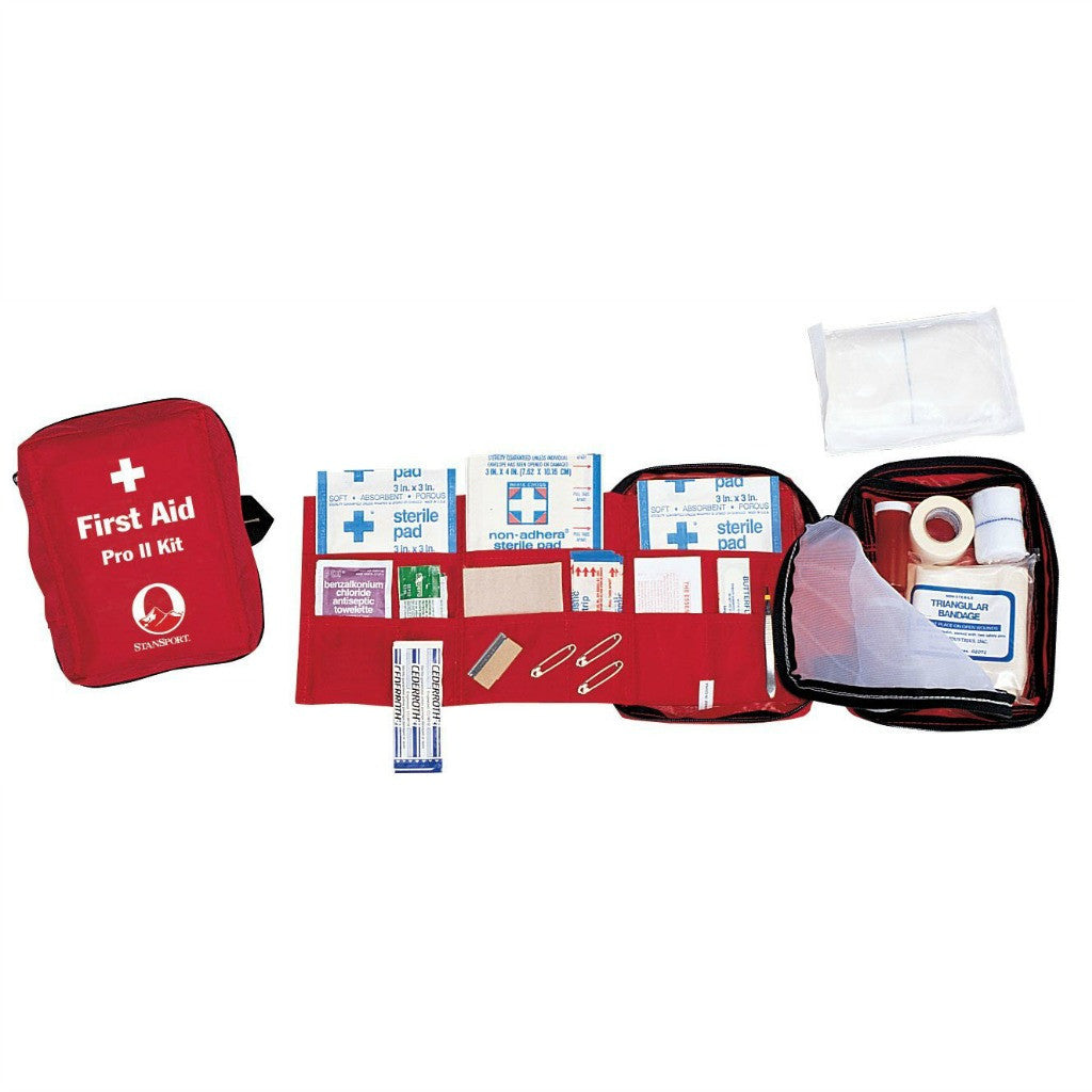 Basic emergency first aid kit for families