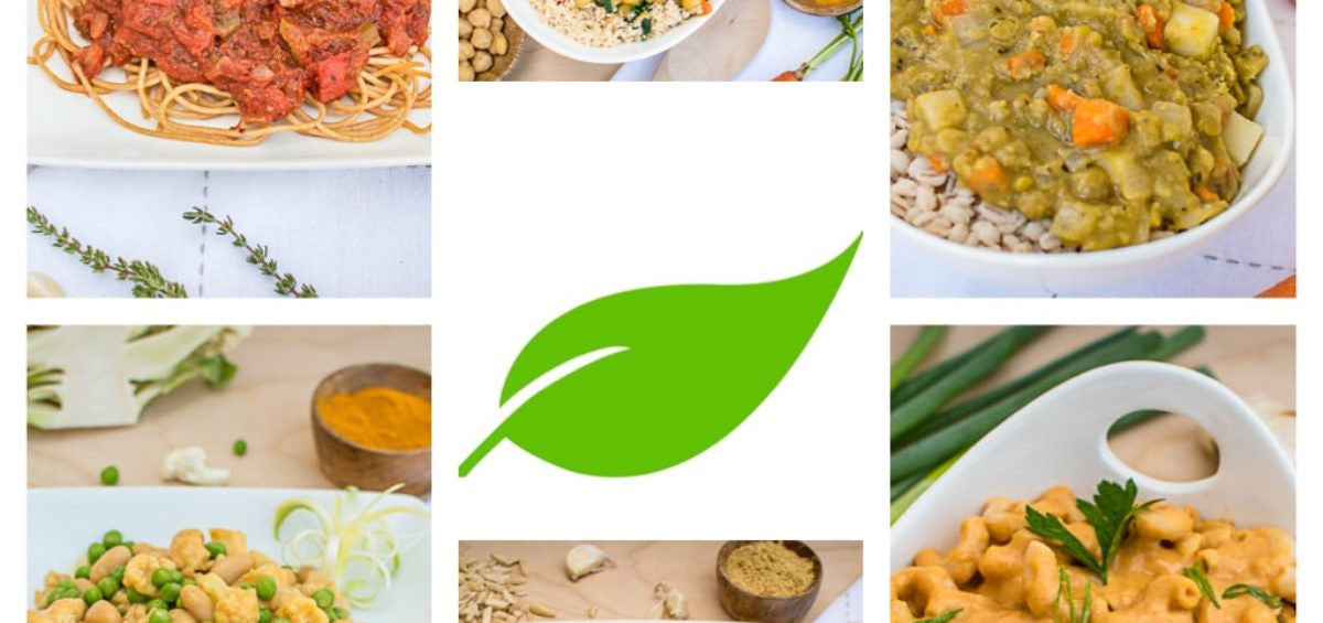 What Exactly is a PlantPure Meal Starter?
