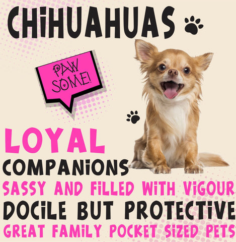 Chihuahuas Dog Trait range of PAWSOME Gifts for all the family