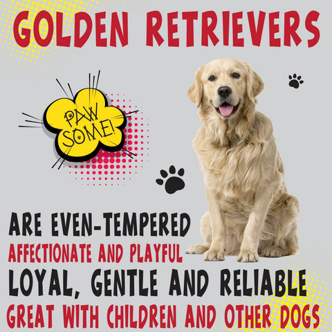 Golden Retriever Dog Trait range of PAWSOME Gifts for all the family