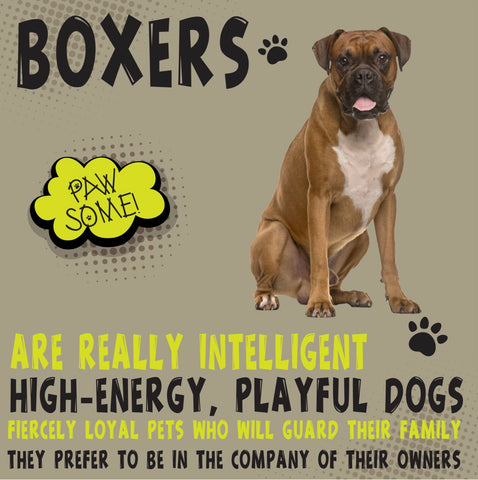 Boxer Dog Trait PAWSOME Metal Wall Art (MOQ3)