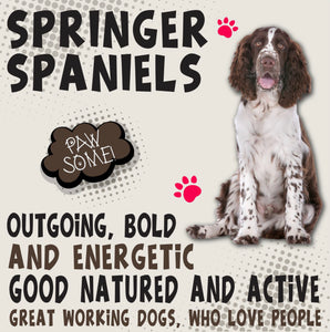 Springer Spaniel Dog Trait range of PAWSOME Gifts for all the family