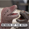 Beware of the Wife Road Sign