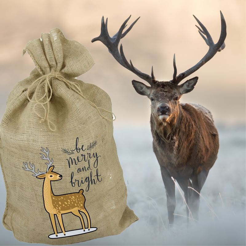 Merry Christmas, Be Merry and Bright Stag, Santa Sack