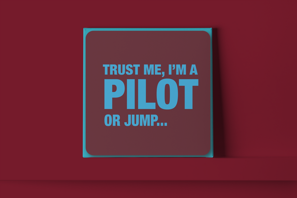 Trust me I'm a pilot Metal Wall Sign