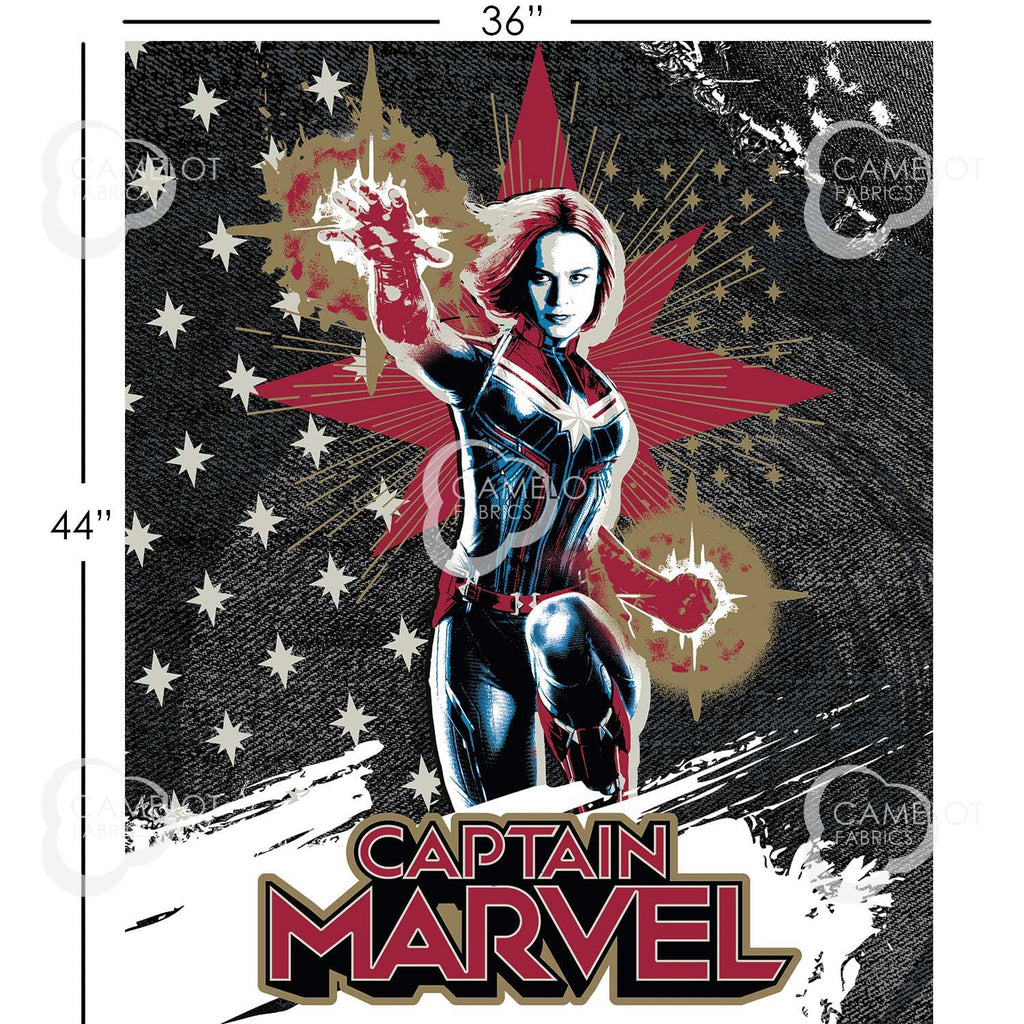 Captain Marvel Panel