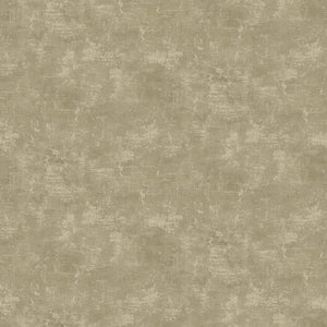 Canvas - Neutrals