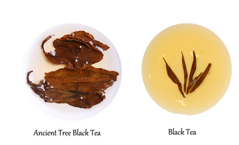 bestleaftea- black tea