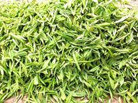 Organic 2020 Premium MingQian LongJing Dragon Well Green Tea /明前龙井