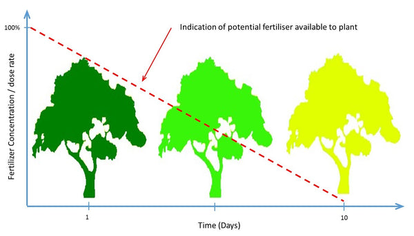 Traditional fertilizing method and results