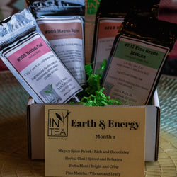Earth and Energy - up to 12 months - $15/month