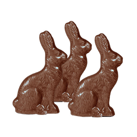 Solid Chocolate Bunnies - Small