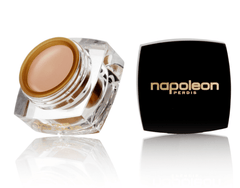 Napoleon Perdis The One Concealer Light Free Shipping