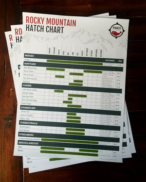 fly fishing hatch chart