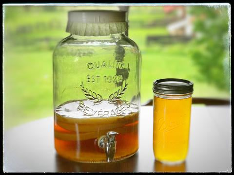 How We Probiotic (Simple Kombucha Brewing)
