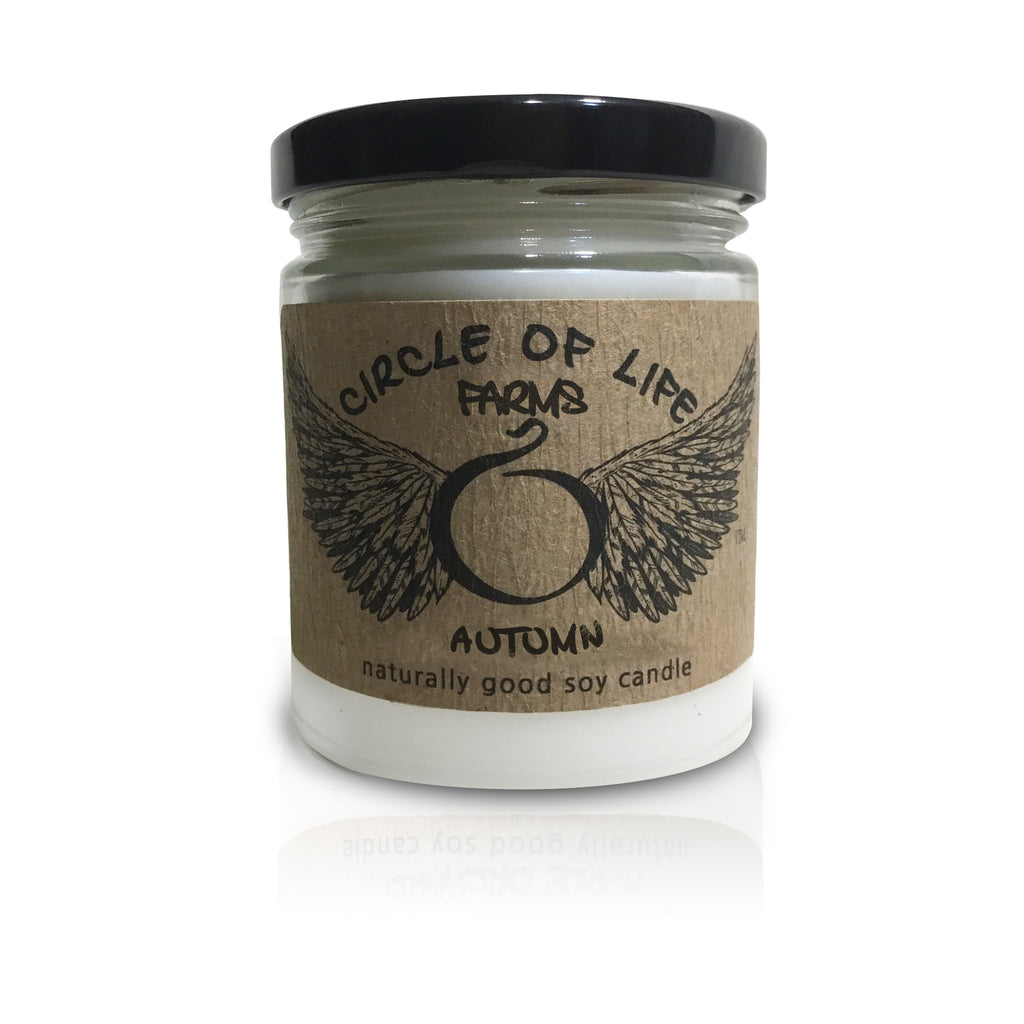 Autumn  Soy Candle 9 oz