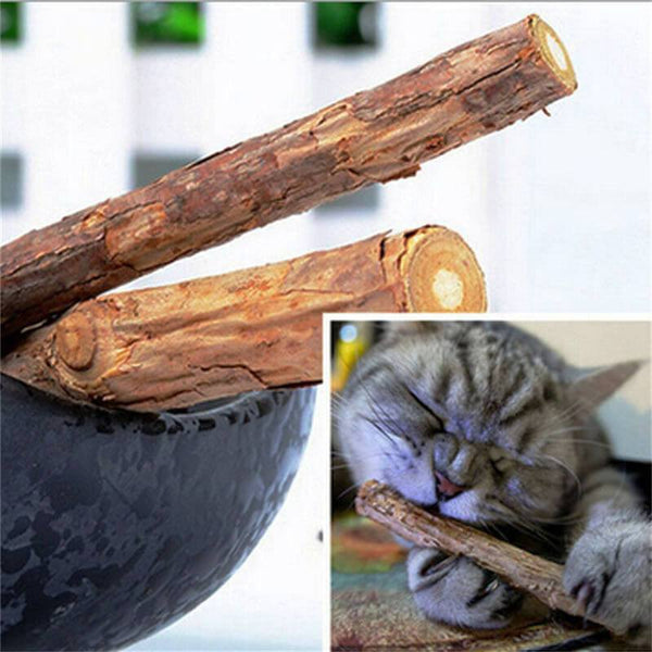 ChisCat Matatabi Cleaning Sticks - Keep Cat's Teeth Clean and Healthy - Meowaish
