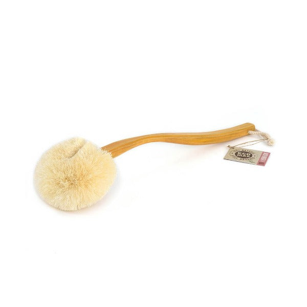 Eco Max Wet & Dry Body Brush with handle