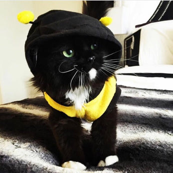 Fancy Cat Bumble Bee Hoodie Costume