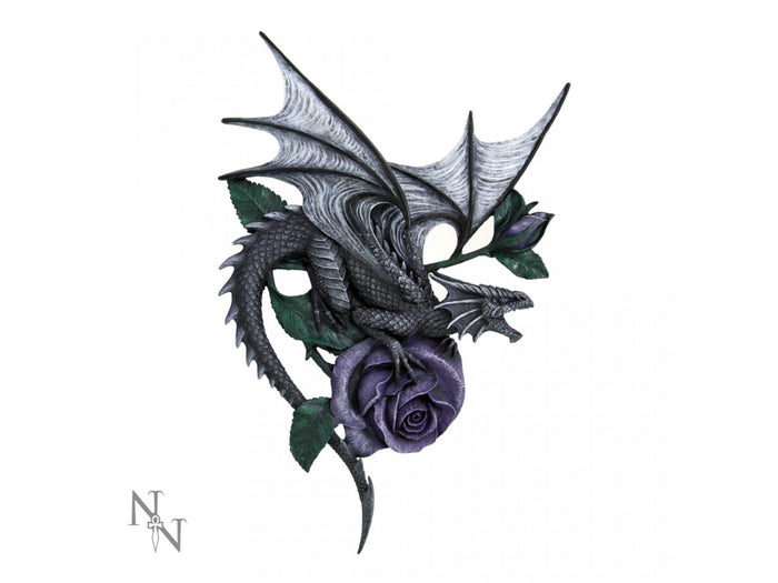 Dragon Beauty Wall Plaque by Anne Stokes 40cm - Gemwaith