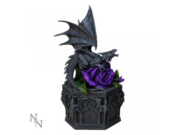 Dragon Beauty Box by Anne Stokes 25cm - Gemwaith